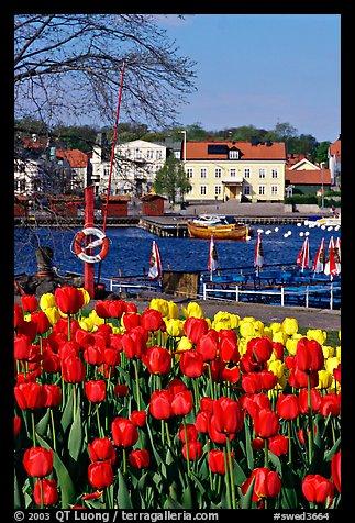 صور لدولة السويد....... swed3664.jpeg
