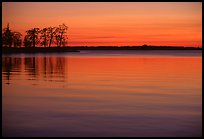 Trees and sunset on Vattern Lake, Vadstena. Gotaland, Sweden (color)