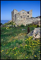 Ruins of the 16th century castle Brahehus near Granna. Gotaland, Sweden