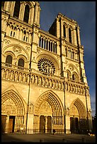 Notre Dame Cathedral, late afternoon. Paris, France