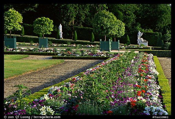 Flowers in formal gardens of the Versailles palace. France