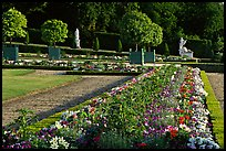 Flowers in formal gardens of the Versailles palace. France (color)