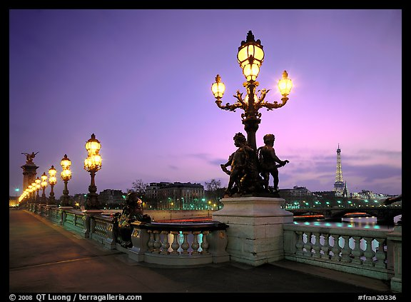 Lamps on Alexandre III bridge at sunset. Paris, France
