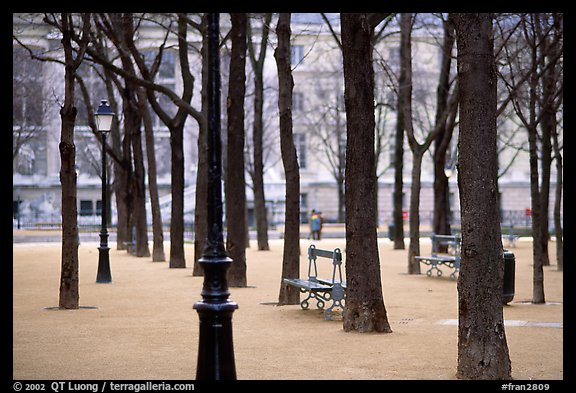 Park in winter, place Dauphine, ile de la Cite. Paris, France (color)