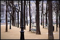 Park in winter, place Dauphine, ile de la Cite. Paris, France