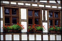 Detail of half-timbered house. Strasbourg, Alsace, France