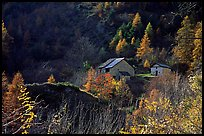 Barns in Autumn. Maritime Alps, France