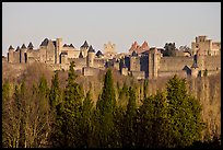 Distant view of fortified town. Carcassonne, France