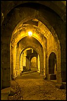 Main entrance of medieval city through drawbridge at night. Carcassonne, France (color)