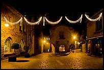 Place a Pierre Pont with Christmas decorations at night. Carcassonne, France ( color)