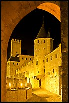 Medieval castle illuminated at night. Carcassonne, France ( color)