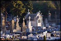 Cemetery. Carcassonne, France ( color)
