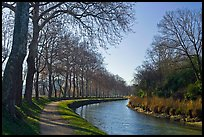 Rural section of Canal du Midi. Carcassonne, France