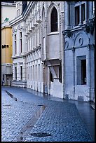 Pavement and buildings, Place St Andre. Grenoble, France ( color)