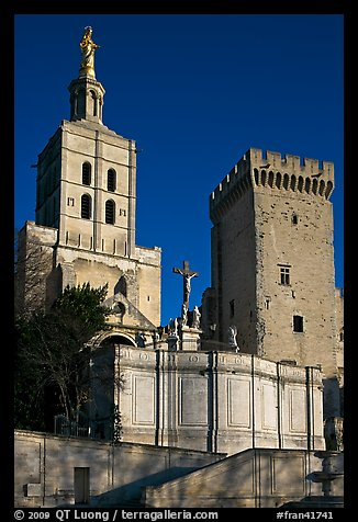 Romanesque Cathedral of Notre-Dame-des-Doms. Avignon, Provence, France (color)