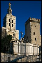 Romanesque Cathedral of Notre-Dame-des-Doms. Avignon, Provence, France ( color)