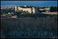 Ramparts across bare trees. Avignon, Provence, France