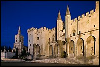 Palace of the Popes and Cathedral at night. Avignon, Provence, France