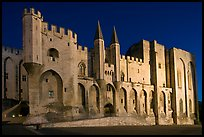 Gothic facade of Papal Palace at night. Avignon, Provence, France