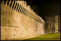 Ramparts at night. Avignon, Provence, France (color)