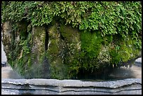 Moss-covered thermal fountain. Aix-en-Provence, France