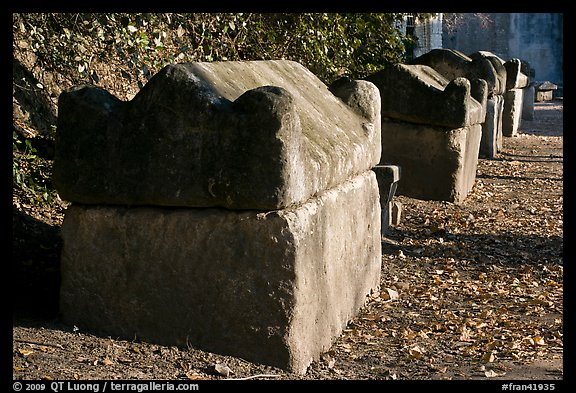 Sarcophagi lining main path, Alyscamps. Arles, Provence, France (color)