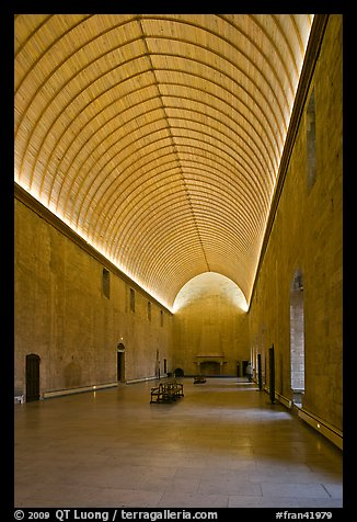 Room with vaulted ceilling, Palace of the Popes. Avignon, Provence, France (color)