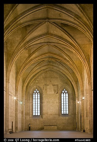 Chapel, Palace of the Popes. Avignon, Provence, France (color)