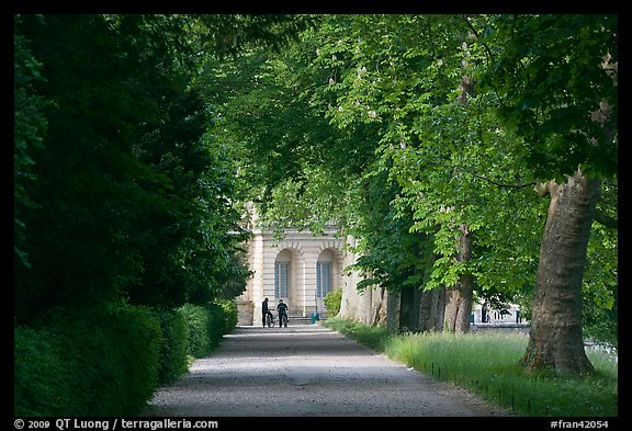 Forested alley and palace, Fontainebleau Palace. France (color)