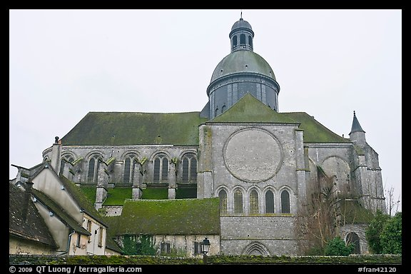 Mossy roofs and dome, Saint Quiriace Collegiate Church, Provins. France (color)