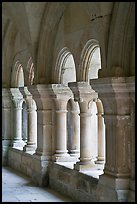 Detail of columns, the cloister, Fontenay Abbey. Burgundy, France (color)