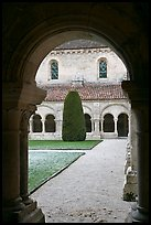 Garden seen from cloister, Abbaye de Fontenay. Burgundy, France