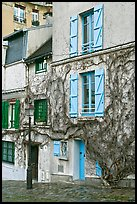 House with blue shutters and bare ivy, Montmartre. Paris, France (color)