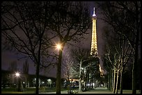 Trees in Champs de Mars and Eiffel Tower at night. Paris, France (color)