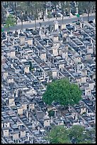Tombs in Cimetierre du Montparnasse seen from above. Paris, France ( color)