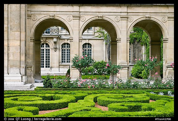 Hedges and roses in courtyard of hotel particulier. Paris, France (color)