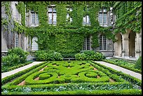 Formal garden in courtyard of hotel particulier. Paris, France