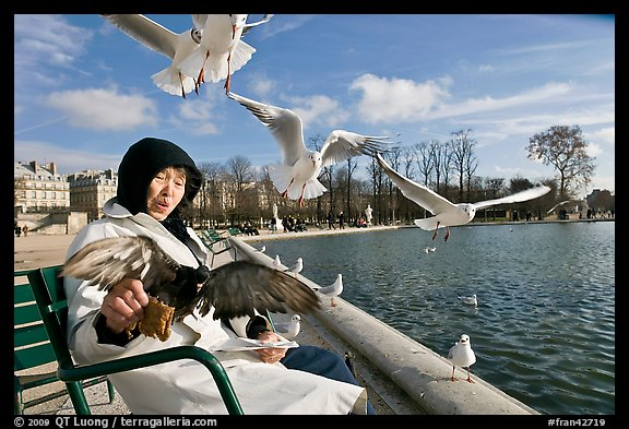 Elderly woman and seagulls, Tuileries garden. Paris, France (color)