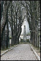 Trees and memorial, Pere Lachaise cemetery. Paris, France