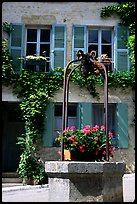 Flowers on a well, old  Vezelay. Burgundy, France