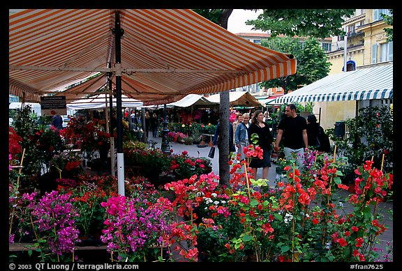 Flower Market, Nice. Maritime Alps, France