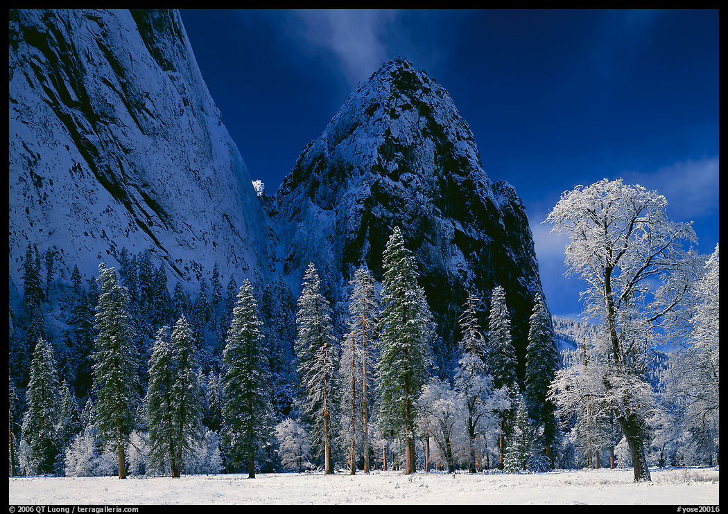 Photo by travel photographer QT Luong: Yosemite National Park
