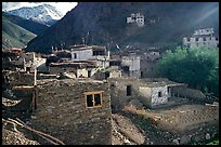 Ichack Village, Zanskar, Jammu and Kashmir. India