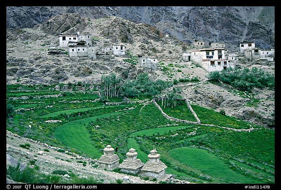 Chortens, cultivated terraces,  and village, Zanskar, Jammu and Kashmir. India