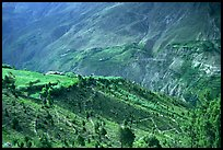 Verdant valley, Lahaul, Himachal Pradesh. India (color)