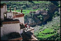Gompa with monk on balcony overlooking verdant village, Zanskar, Jammu and Kashmir. India (color)