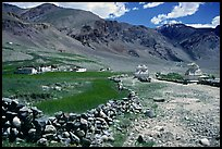 Stone fence, chortens, cultivations, and village, Zanskar, Jammu and Kashmir. India (color)