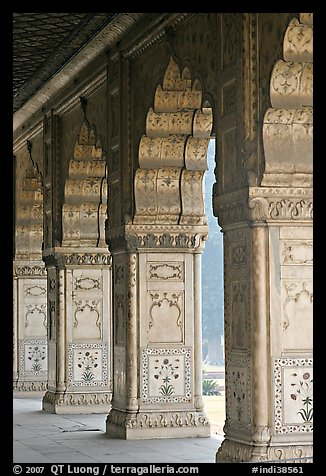 Marble columns,  Royal Baths, Red Fort. New Delhi, India (color)