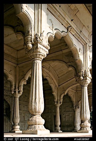 Thin columns, Khas Mahal, Red Fort. New Delhi, India (color)