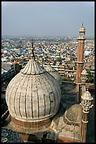 Dome of Jama Masjid mosque and Old Delhi rooftops. New Delhi, India